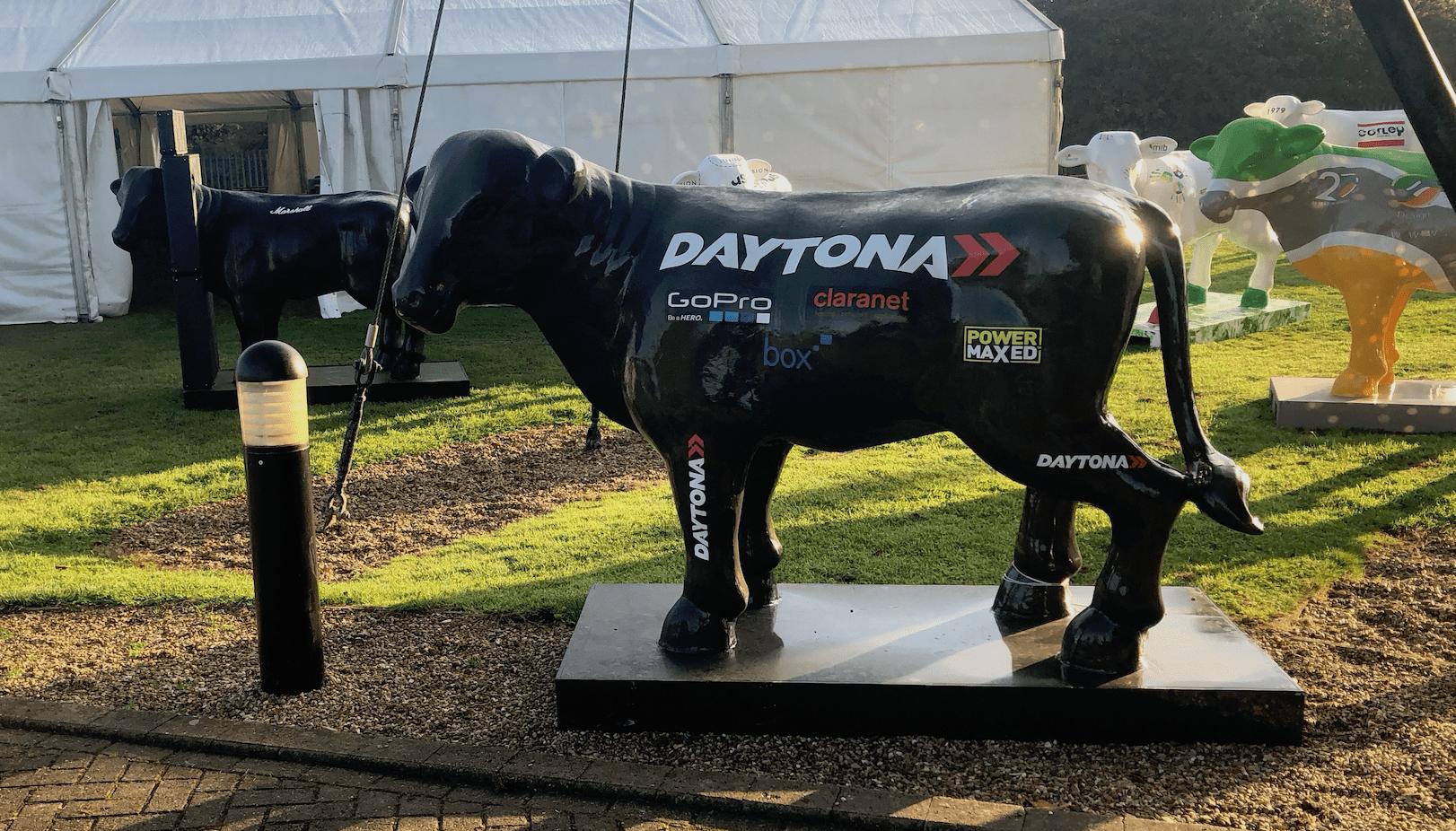 Daytona hosts the HerdABOUTMK Raceday